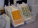 papeles secando